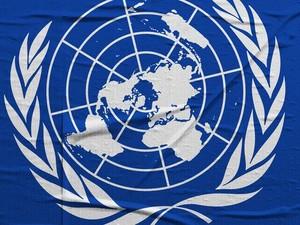 ООН не получила запрос «Луганской народной республики»