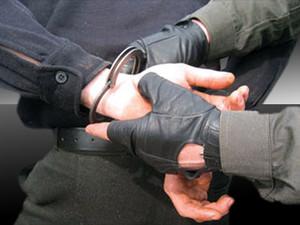 Если похитителей поймают, им грозит до срок до трех лет.
