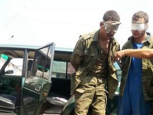 пленные террористы луганск