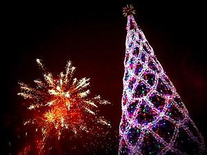 Луганскую елку планируют открыть 26 декабря.