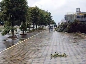 Ветер был такой силы, что вырывал деревья в с корнем и переворачивал автомобили.